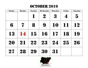 OCTOBER 2019 MEDIA TRACKING